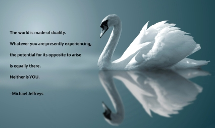 mj quote swan reflection