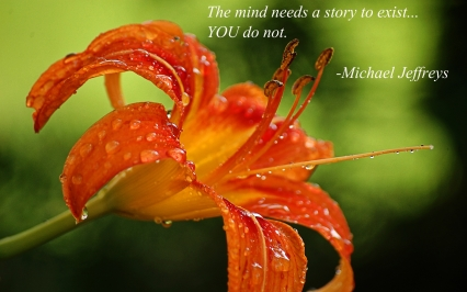 orange flower mj quote