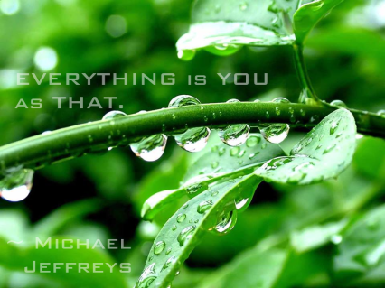 MJ everything quote and water drops green leaf
