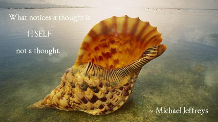 mj quote giant sea shell pic