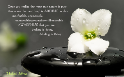 MJ abiding quote zen stone flower pic