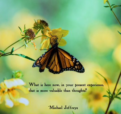 MJ more val than thoughts butterfly pic quote