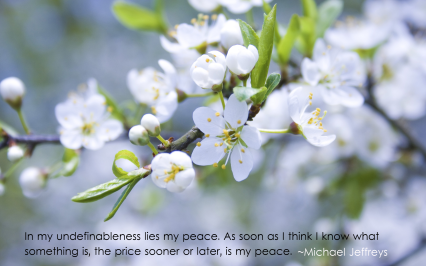 MJ undefinableness apple blossom pic quote