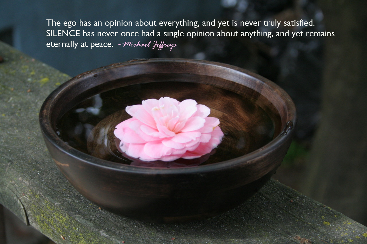 The peace is in the silence meditation picture quote michaeljeffreys mj quote silence no opinion pink flower in water bowl izmirmasajfo Choice Image