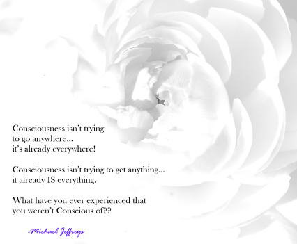 mj consciousness is first white flower quote