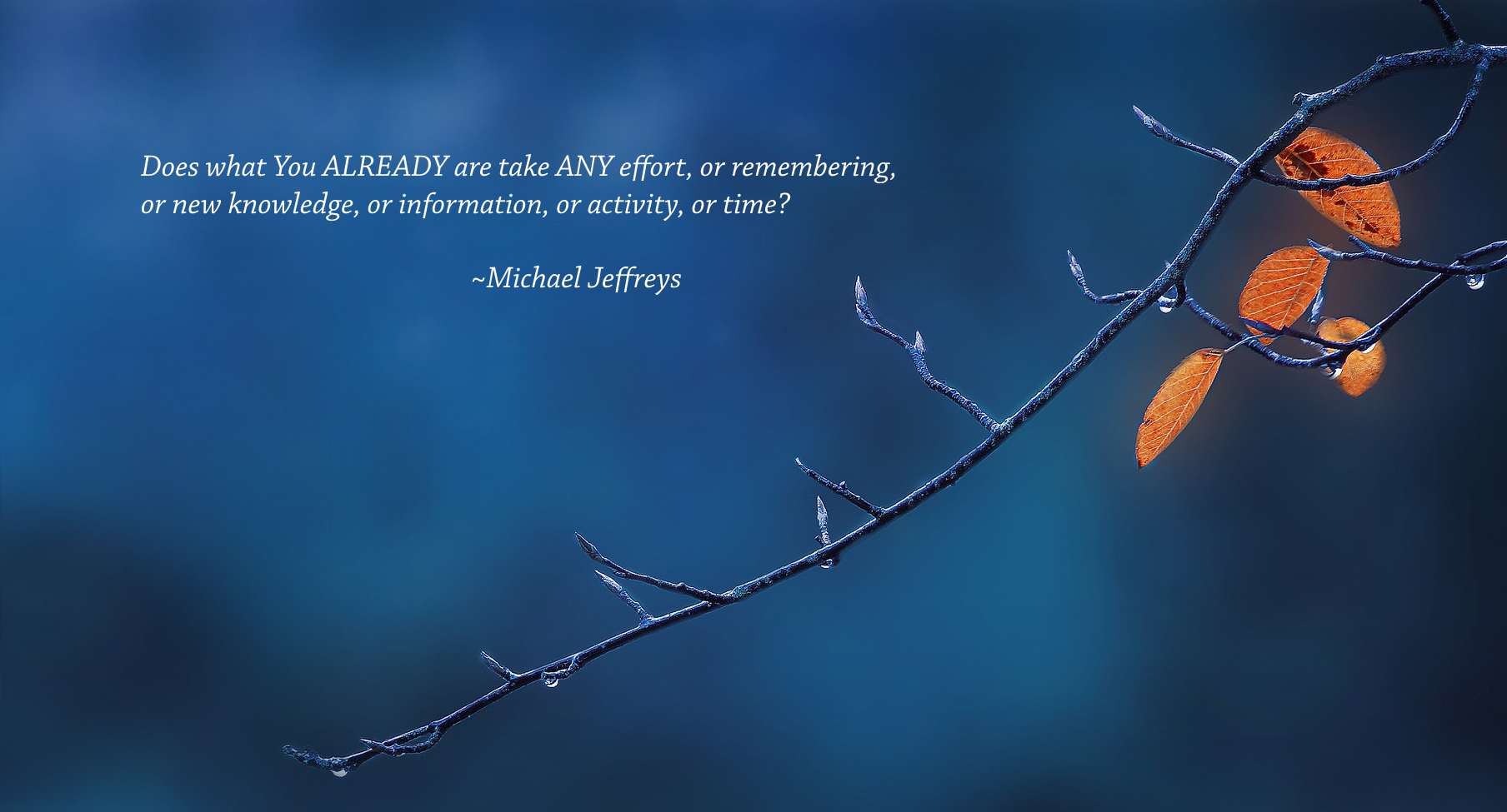 Mj Does What You Already Are... Twig Pic Quote