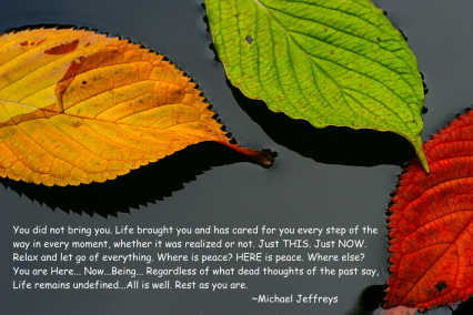 mj you did not bring you leaf pic quote