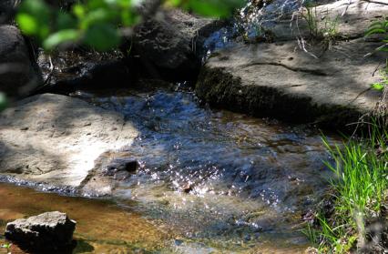 Creek-Flow-Close-Up