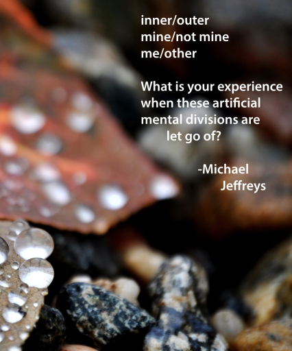 mj inner-outer let go of wet leafs rocks pic quote