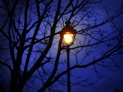 streetlamp-at-night