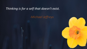mj thinking is for a self that doesn't exist pic quote2