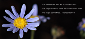 mj the eye cannot see flower pic quote