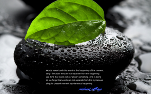 mj words wet rock leaf pic quote
