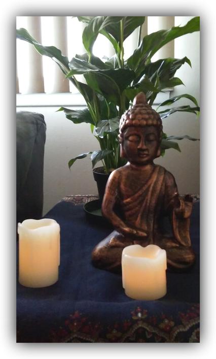 buddhaplant7-14-17 border