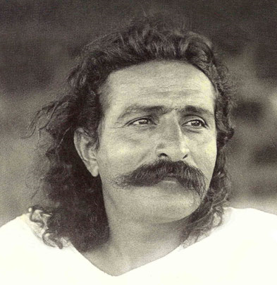 meher baba discourses cover cropped