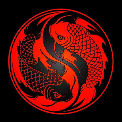 yin yang fishy thoughts